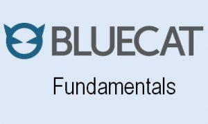 BlueCat Fundamental Online Training